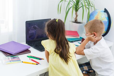 Primary age children using a laptop